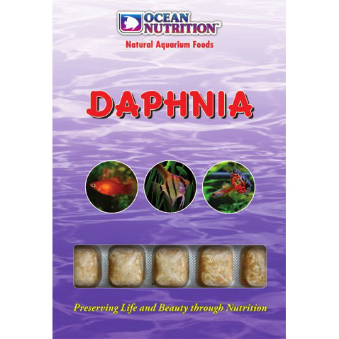 Daphnia (Freshwater Only)