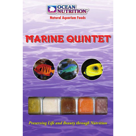 Marine Quintet (Marines Only)