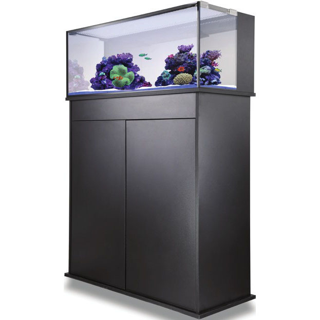 Reef Aquariums